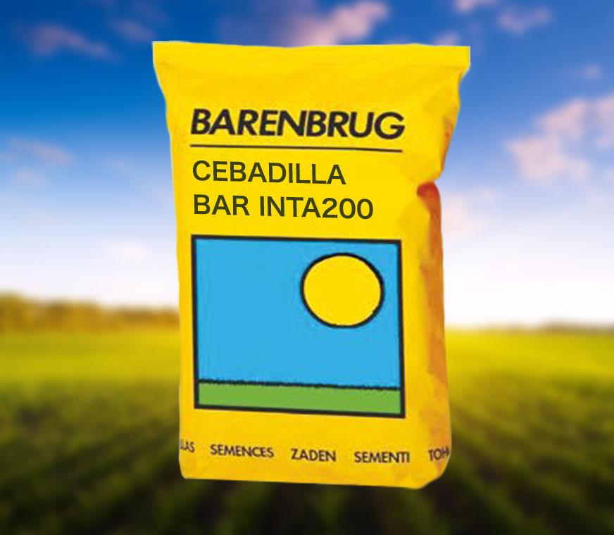 CEBADILLA-BAR-INTA200.jpg