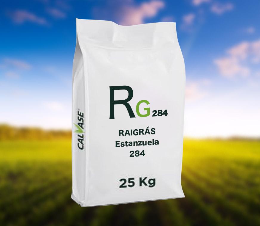 Raigras-Estanzuela-284.jpg