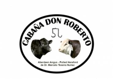 Remate de Cabaña Don Roberto