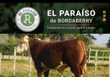 Remate de El Paraíso de Bordaberry