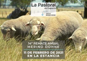 Remate La Pastoral de Capurro